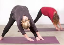 TRE Introductieworkshop @ Artemis yoga IJsselstein   IJsselstein   Utrecht   Nederland